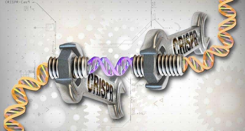 Will gene editing create designer babies?