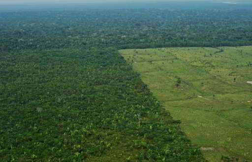 Aerial view of deforestation in the Western Amazon region of Brazil