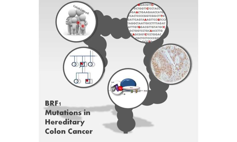 A new genetic marker accounts for up to 1.4 percent of cases of hereditary colon cancer