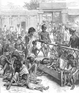 Causes of the great famine, one of the deadliest environmental disasters