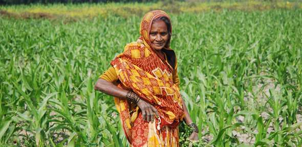Changing the face of Indian farming