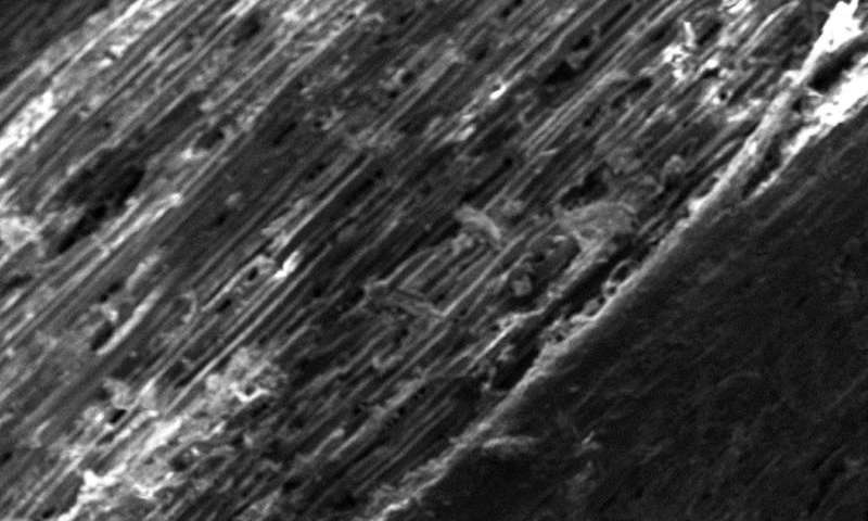 Chemists make laser-induced graphene from wood