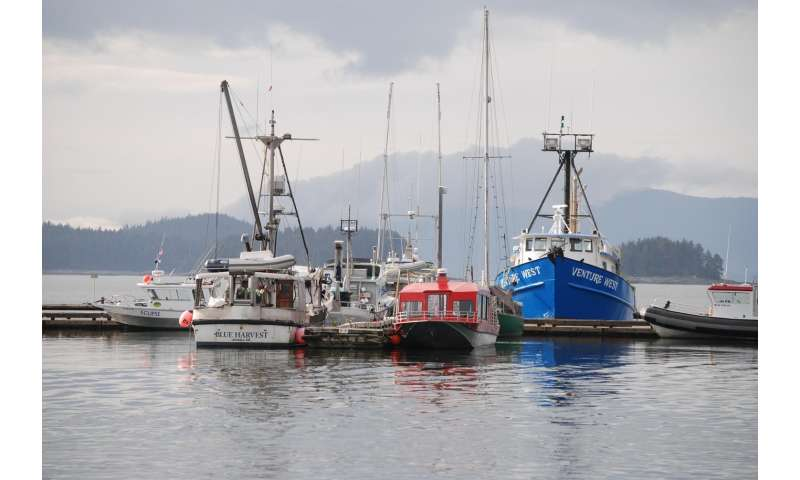 Diversification key to resilient fishing communities