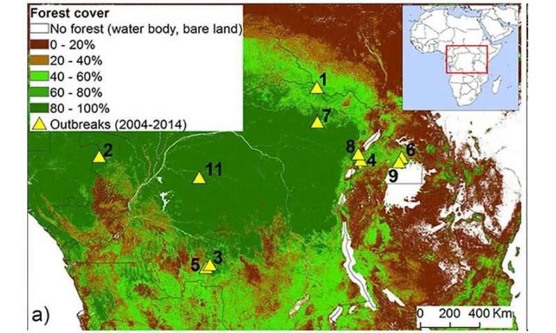 Ebola linked to habitat destruction