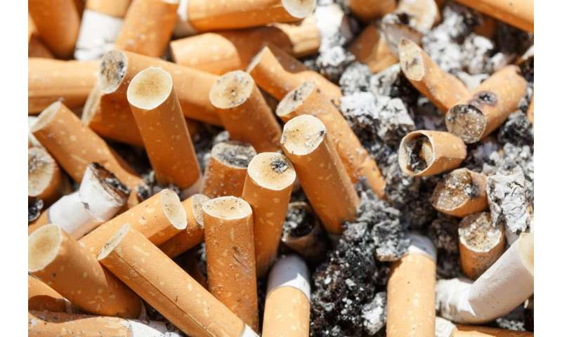 Filters: a cigarette engineering hoax that harms both smokers and the environment
