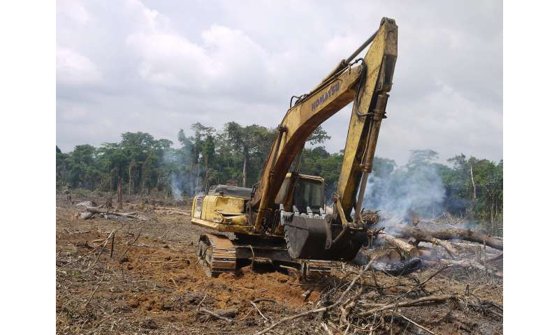 Global road-building explosion could be disastrous for people and nature, say scientists