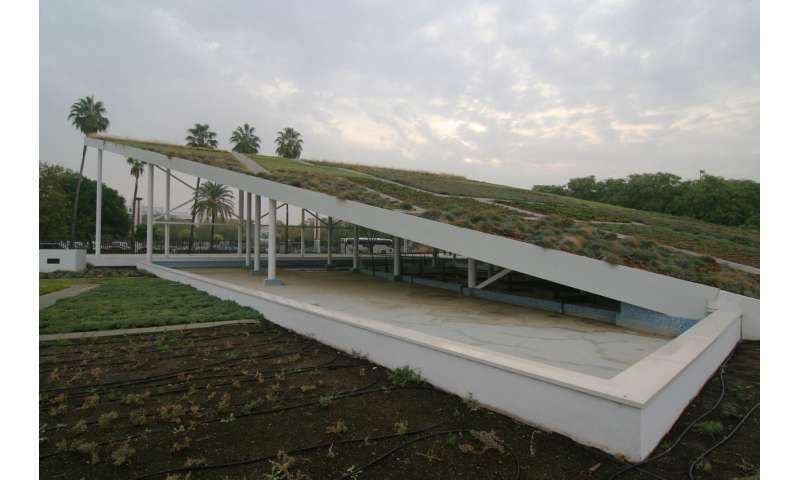 Green rooves to reduce the effects of climate change