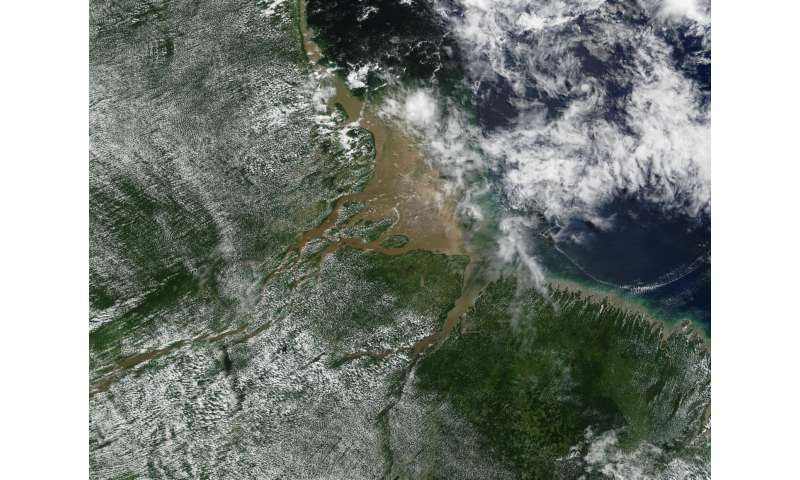 Hotspots show that vegetation alters climate by up to 30 percent
