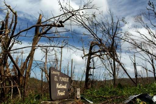 Hurricane Maria wreaked havoc on Puerto Rico's environment, and the road to recovery could be long