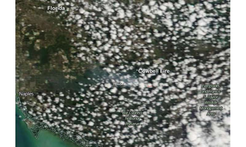 Image: NASA's Terra satellite spots Cowbell Fire in the florida everglades