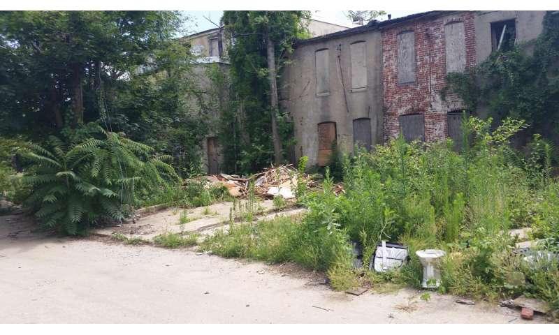 In urban Baltimore, poor neighborhoods have more mosquitoes