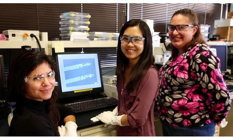 LLNL-developed microelectrodes enable automated sorting of neural signals