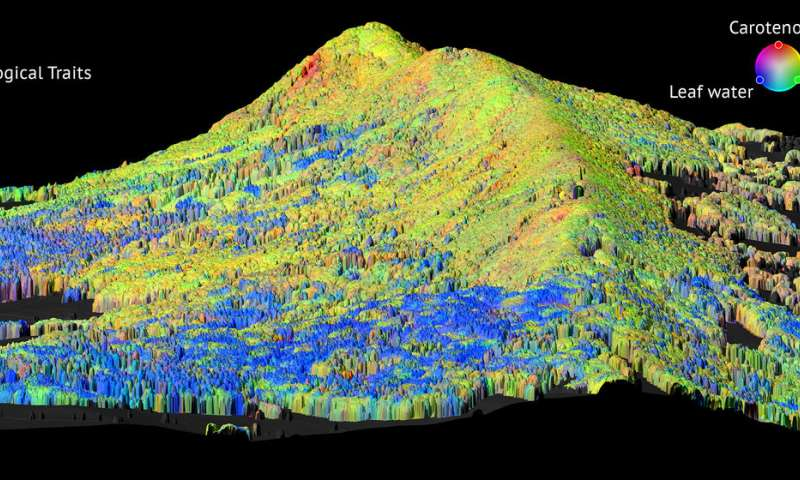 Mapping functional diversity of forests with remote sensing