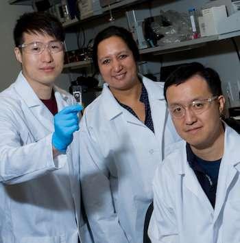 Microfluidics devices clarify how dispersants modify asphaltene to keep pipes open