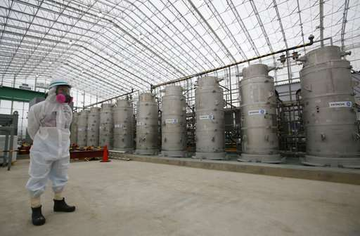 Multiple challenges remain to Fukushima nuclear cleanup