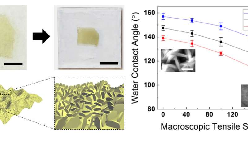 Nano-level lubricant tuning improves material for electronic devices and surface coatings