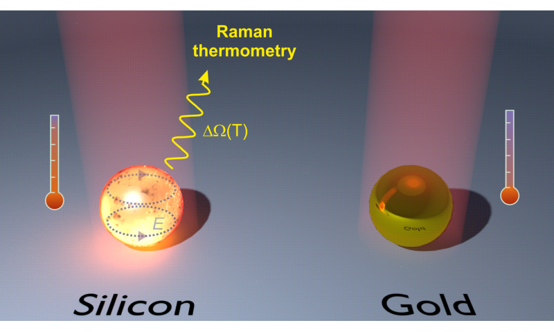 Nanosized silicon heater and thermometer combined to fight cancer
