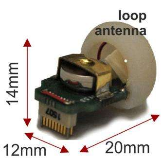New device for refined neural recording in mice could transform dementia research