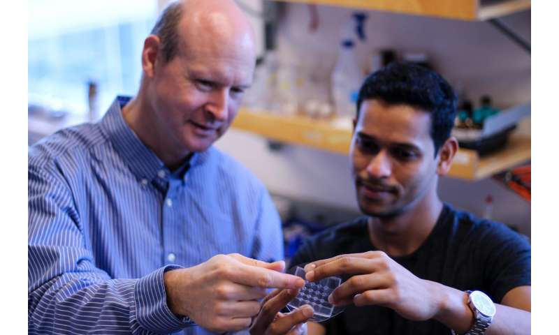 New flexible sensor holds potential for foldable touch screens