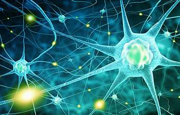 New gene therapy treatment routes for motor neurone disease uncovered in new study