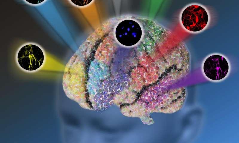 New microscopy method breaks color barrier of optical imaging
