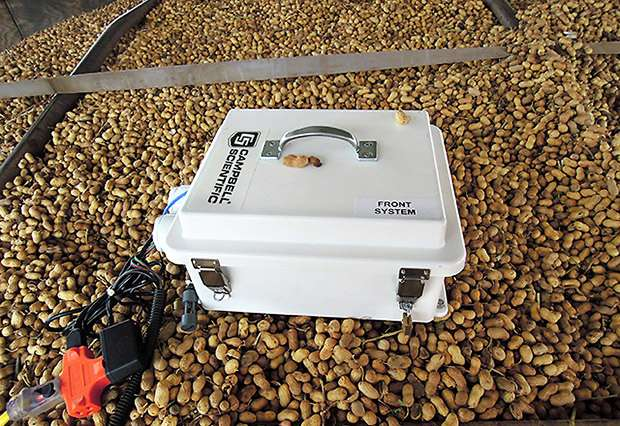 New sensor system for improved peanut drying