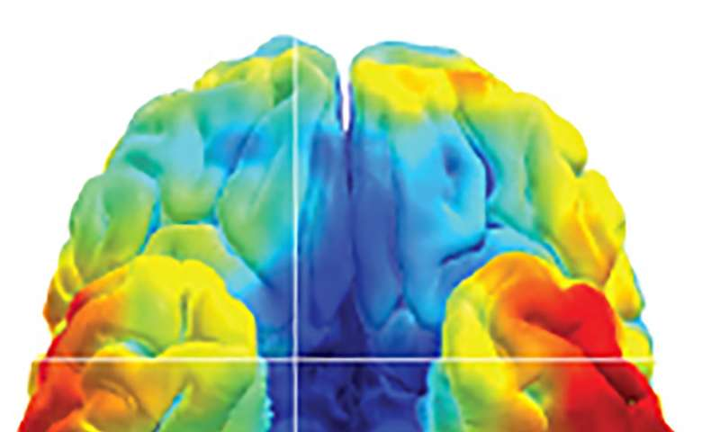 NIH scientists try to crack the brain's memory codes