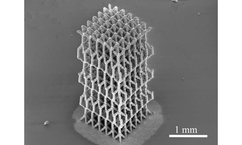 Novel 3-D manufacturing leads to highly complex, bio-like materials