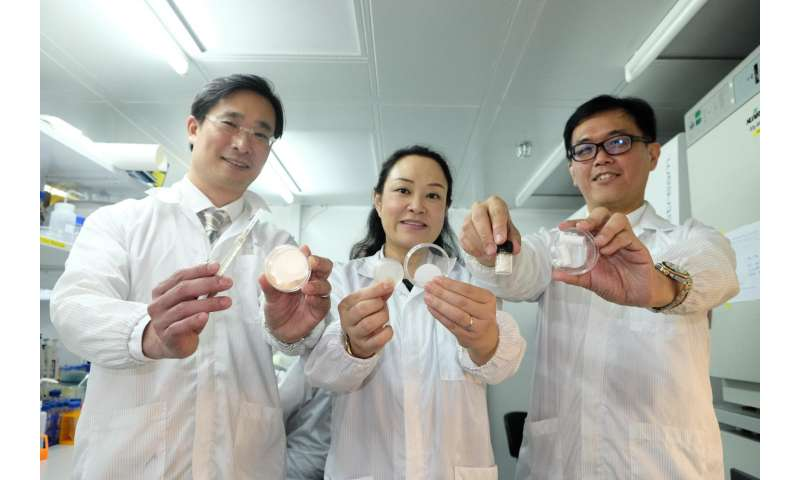 NTU scientists develop patch which could improve healing and reduce scarring