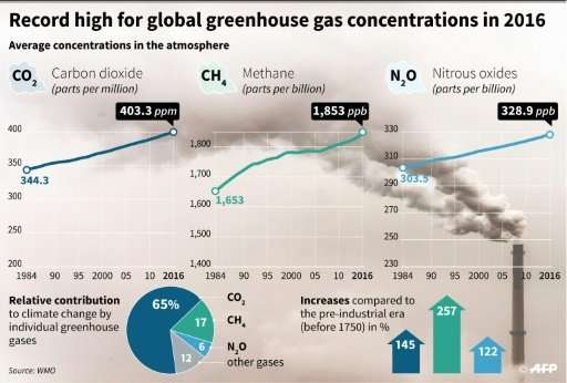 Record high for global greenhouse gas concentrations
