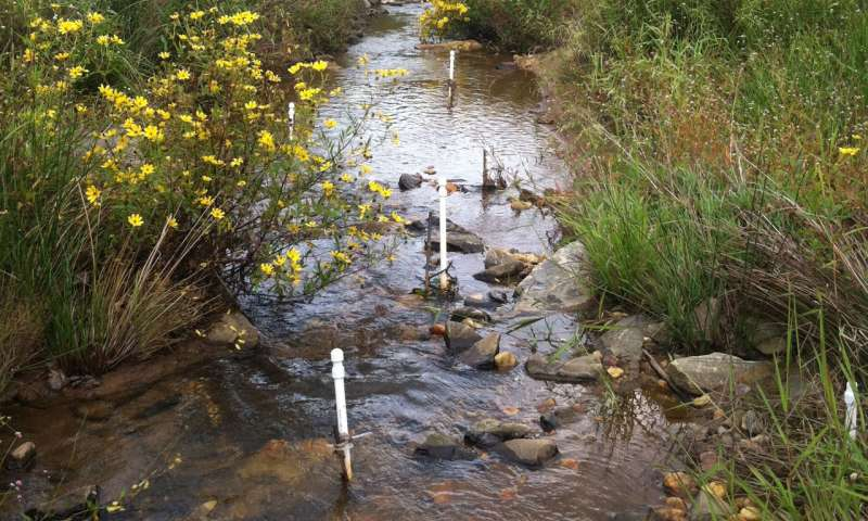 Removing nitrate for healthier ecosystems