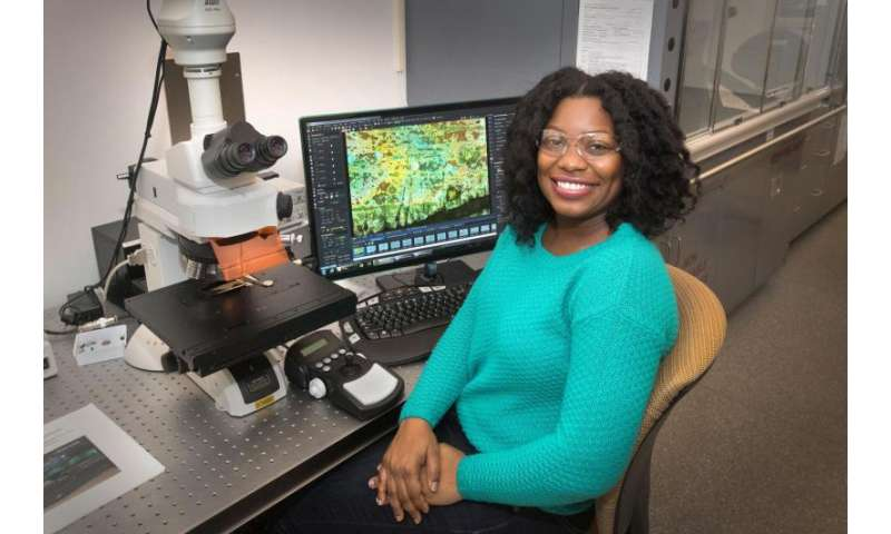 Researcher uses infrared light to explore how fungal associations help plants thrive