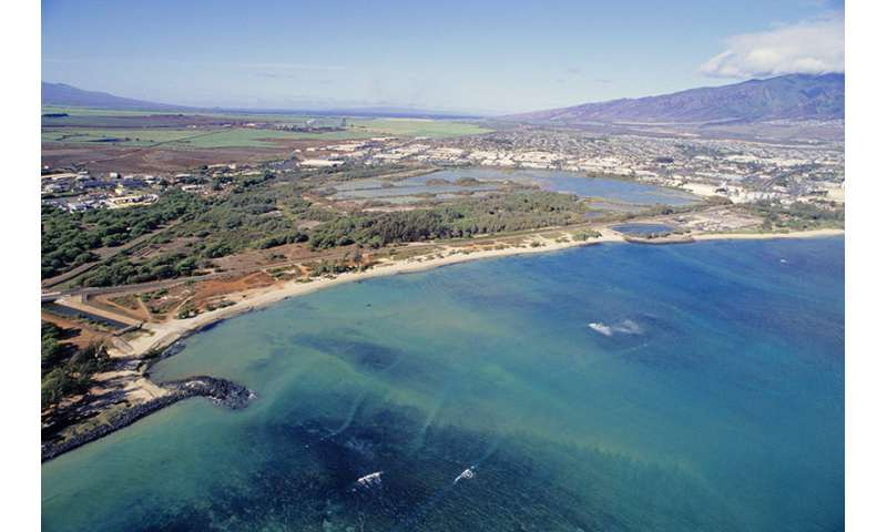 Safeguarding the future of coastal ecosystems