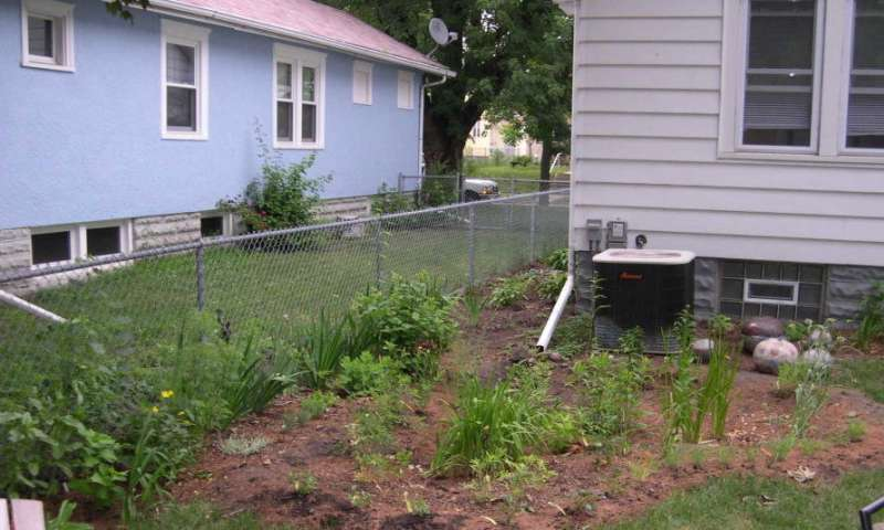 Save stormwater at home with a veggie raingarden