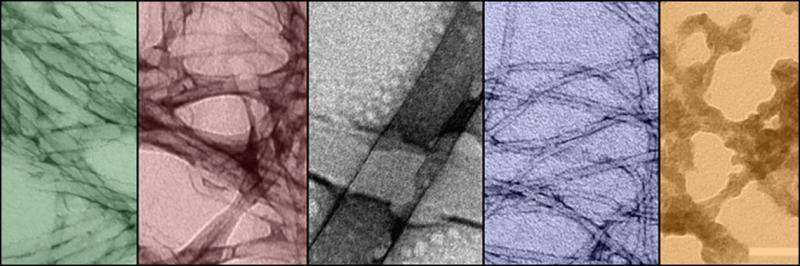 Shapeshifting Materials: Using Light to Rearrange Macroscopic Structures