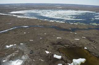 Sunlight and the right microbes convert Arctic carbon into carbon dioxide
