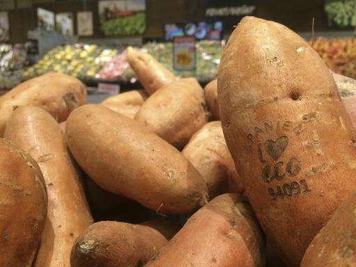 Swedish supermarket tests lasers to label organic produce