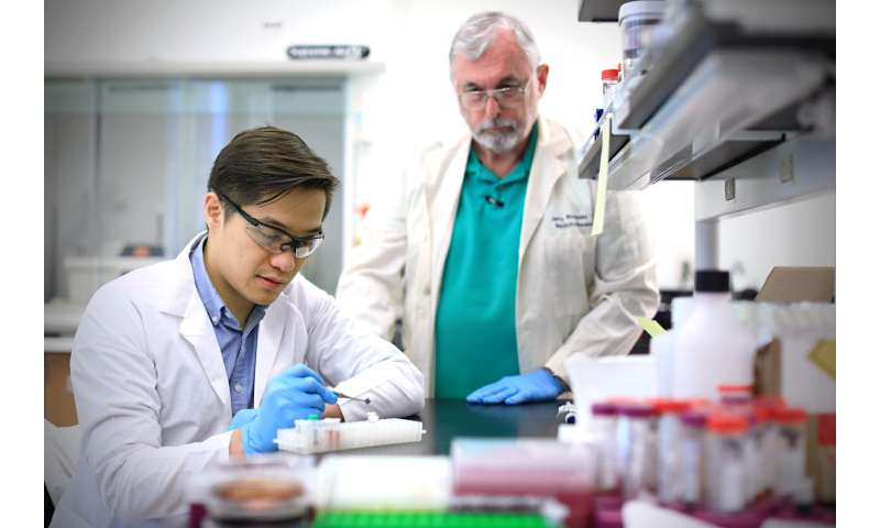 Test uses nanotechnology to quickly diagnose Zika virus