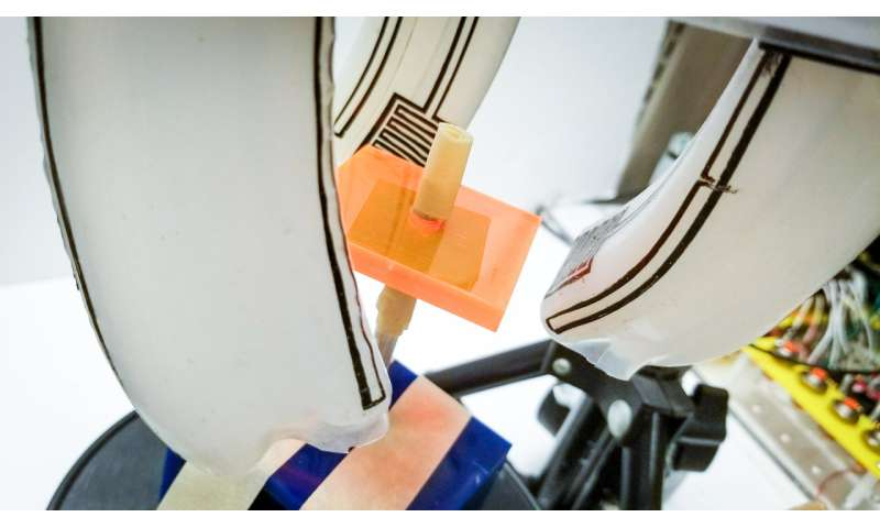 This soft robotic gripper can screw in your light bulbs for you