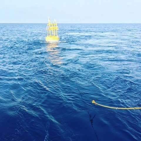 Underwater acoustic localization of marine mammals and vehicles