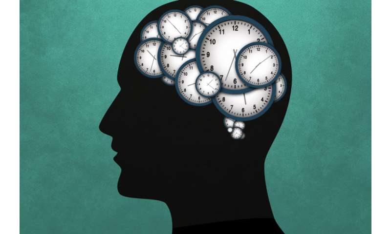 Neuroscientists discover networks of neurons that stretch or compress their activity to control timing
