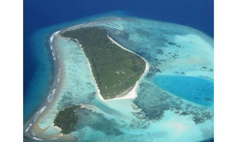 Scientists counter threat of flooding on coral reef coasts