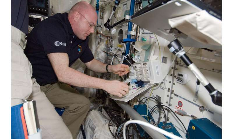 Study examines effects of spaceflight on immune system