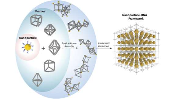 Nanoparticles that put themselves together