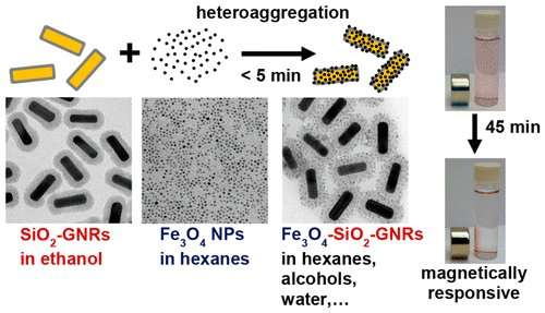 Researchers find simpler way to deposit magnetic iron oxide onto gold nanorods