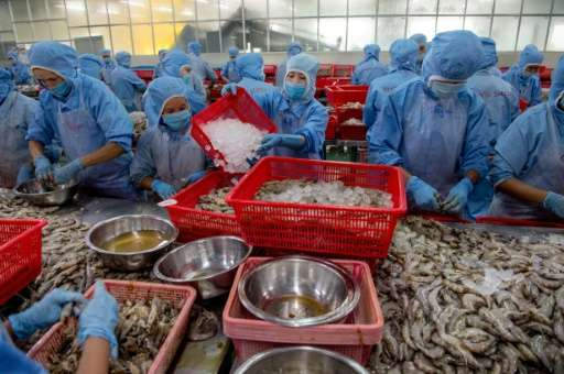 Environmentalists warn that the bounty from intensive shrimp farming may be short-lived as pollution and disease increasingly la