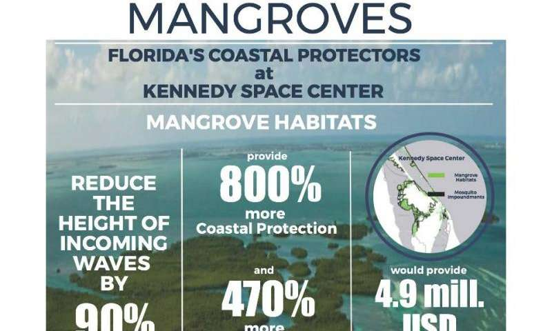 New research shows protective value of mangroves for coastlines