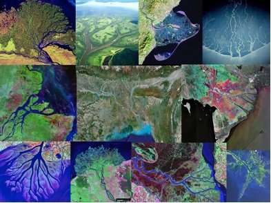Scientists see order in complex patterns of river deltas