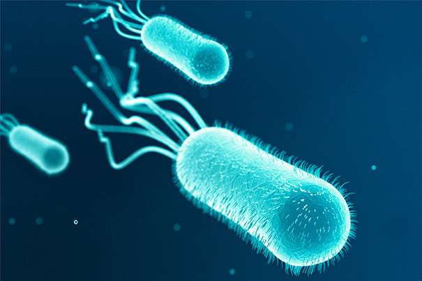Research reveals microbial threat to key nutrient