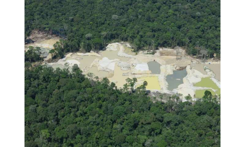 Researchers map the illegal use of natural resources in the protected Brazilian Amazon